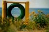 meri sihikul Pildi saatis: viljar foto Kirjeldus: 28.08.14, roosta rand